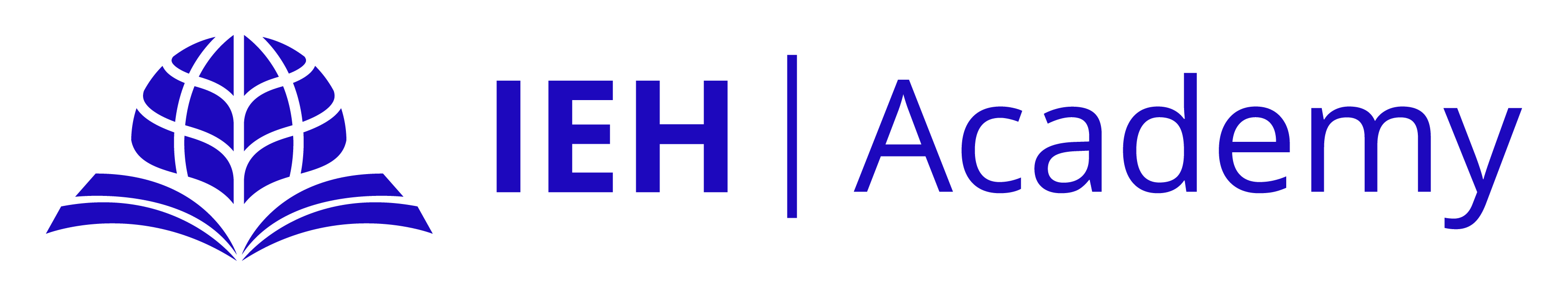 IEH Academy